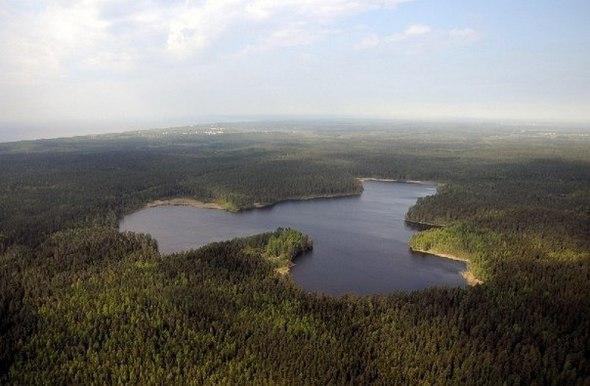 Пятерка озёр в Ленобласти, богатых разнообразной рыбой.