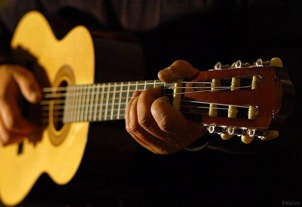 Вечер песен под гитару в свободном пространстве Типичный Питер