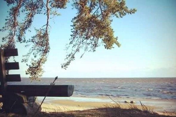 Топ-7 пляжей Ленинградской области