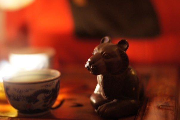 Эрмиты в чайном клубе на Фонтанке