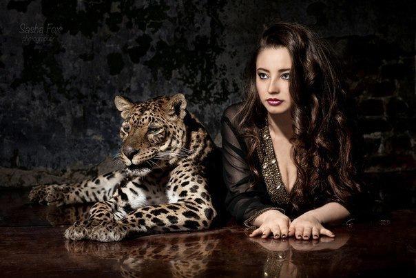 Подари себе леопарда