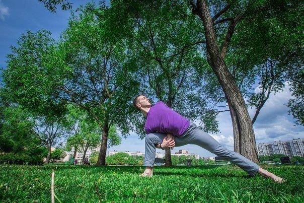 Оздоровительный курс Йога с нуля