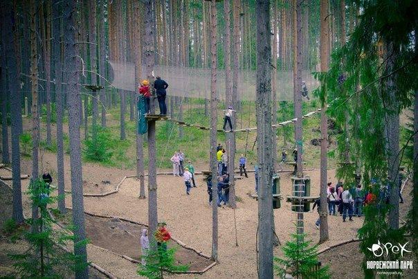 Самый большой веревочный парк в Санкт-Петербурге и России – Норвежский парк...