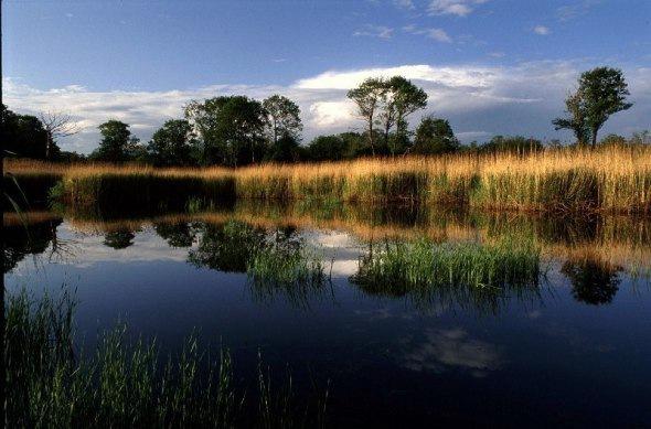 Экологические зоны Петербурга