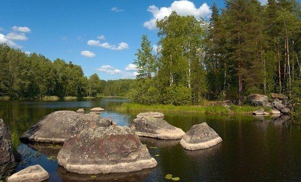 Карта рыбных мест Ленинградской области