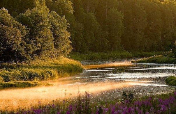 Интересные места для отдыха в Ленинградской области