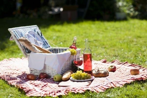 Топ-7 чудесных мест для пикников в черте города