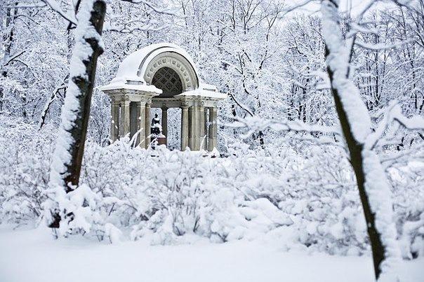 Чудесный Павловск: девять удивительных мест