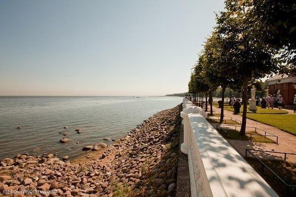 Лучшие морские виды в Петербурге
