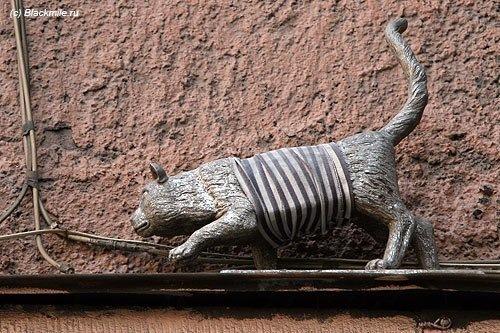 Железные и каменные коты Петербурга