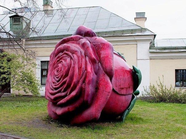 Роза ростом с человека