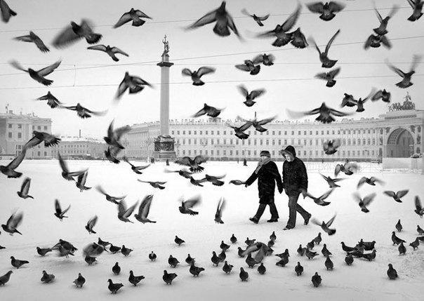 Петербург - самый загадочный и мистический город не только России, но и Европы. Умы ученых потрясают самые необъясн...