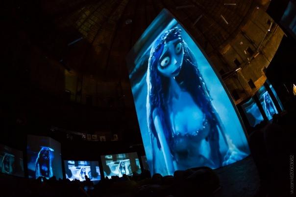 Необычные Киноночи в Люмьер-холле в Петербурге