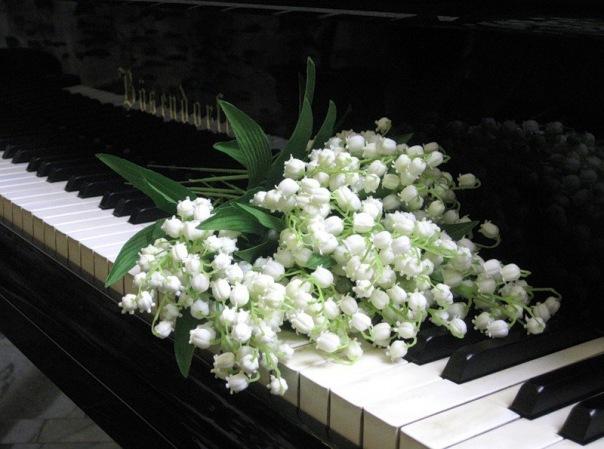 В центре Петербурга пройдет необычный симфонический концерт «Времена Года»