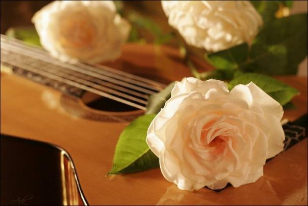 Любители живой гитарной музыки приглашаются!