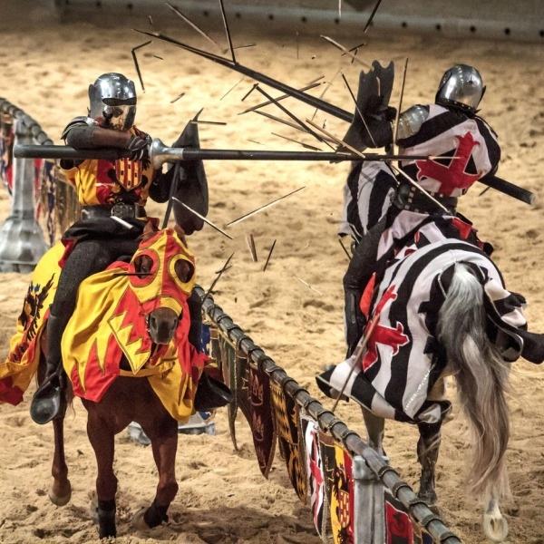 Недалеко от Питера, в Рутении, пройдет рыцарский фестиваль в эти выходные