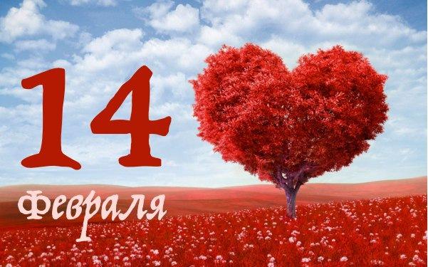 14 идей ярких подарков на 14 февраля