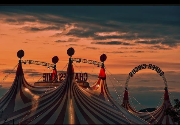 Цирк на Фонтанке переедет в новое шапито