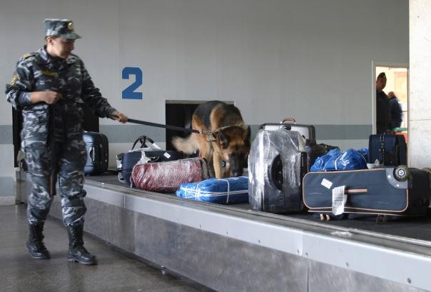 В Госдуме предложили ограничить въезд в Россию иностранцев