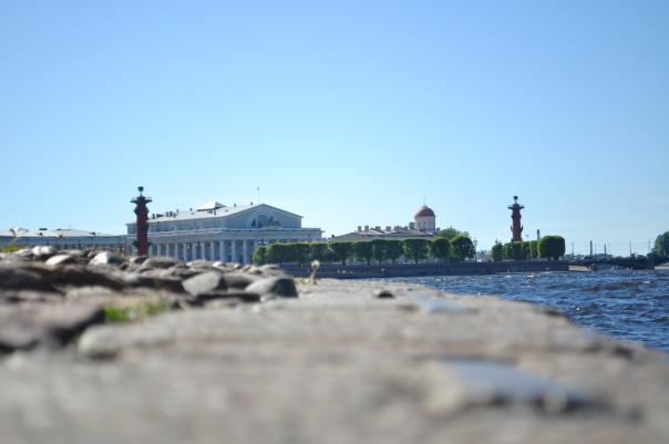 Смольный согласовал схему проведения ремонтных работ на Васильевском острове.