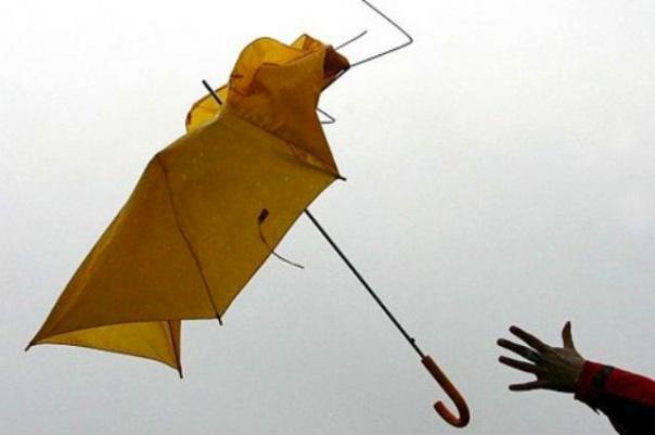 В Ленобласти ожидается усилиение ветера и туман