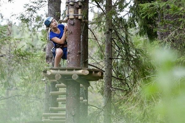 На Елагином острове появится веревочный парк