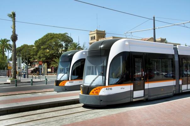 Скоростные трамваи будут ходить по Красногвардейскому району