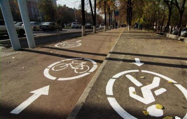 В Петербурге обустроят 10 км велодорожек