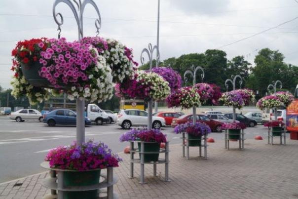 Из-за сокращения бюджета в Петербурге будут хуже убирать улицы