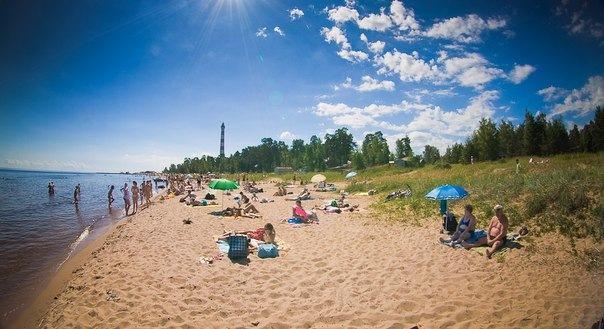 В Ленобласти допущены к эксплуатации 17 пляжей