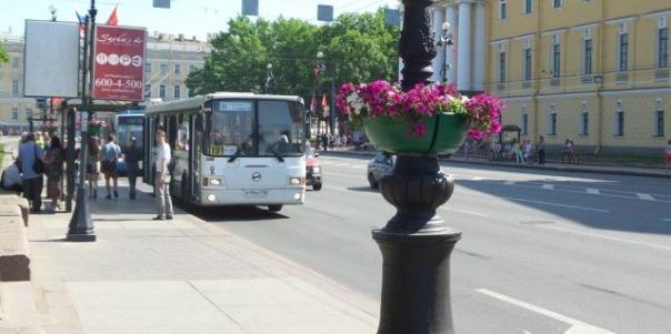 Более 120 антивандальных остановок транспорта появились в Петербурге