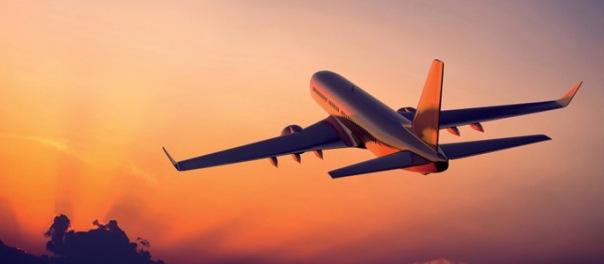 Самолет, летевший из Петербурга в Москву, столкнулся с птицей
