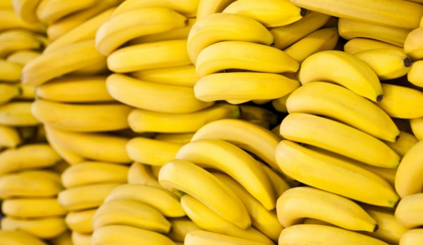 С Калининской овощебазы в Петербурге украли 22 тонны бананов