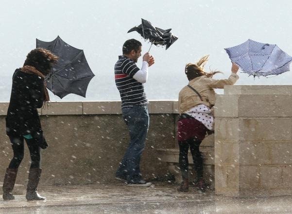 На субботу синоптики обещают сильный ветер в Петербурге