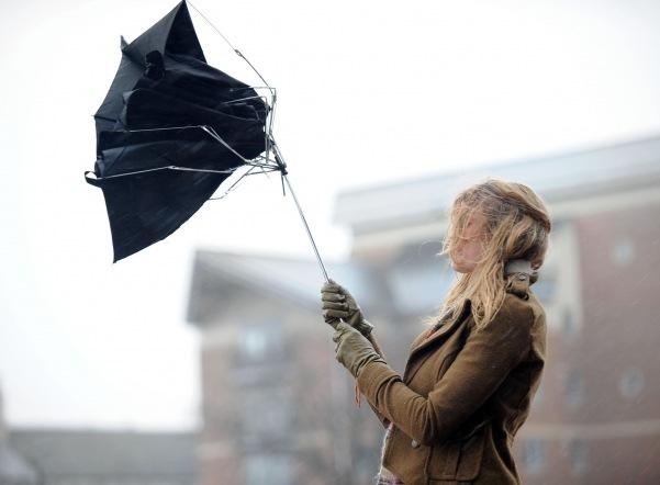 МЧС предупреждает об усилении ветра вечером в пятницу