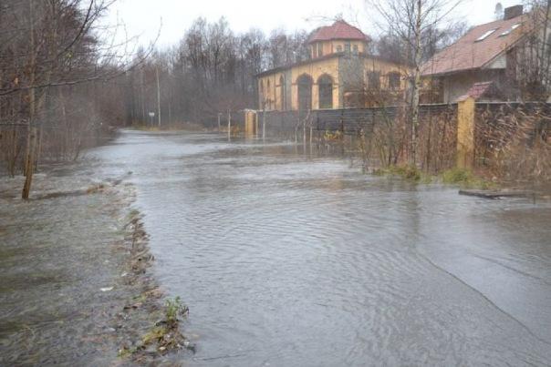 Посёлок Александровская в Сестрорецке затопило из-за наводнения