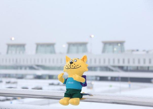 Талисманом аэропорта Пулково стал желтый кот