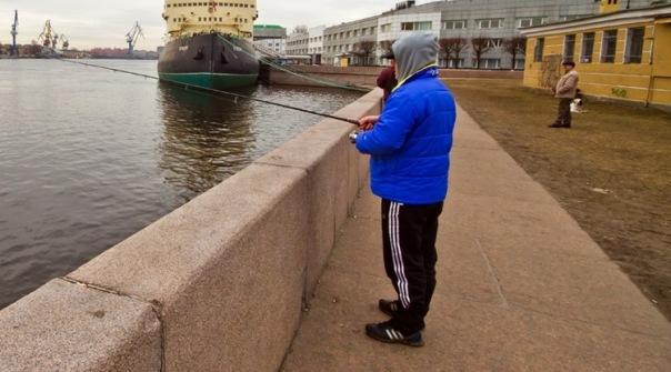 На Неве в Петербурге браконьеры наловили миноги на 1 миллион рублей