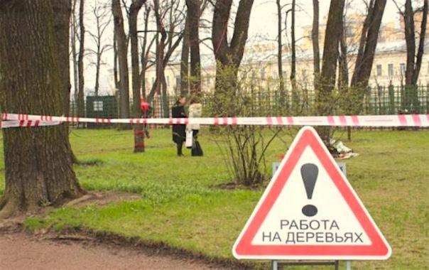 Городские сады и парки Петербурга закрываются на весеннюю просушку