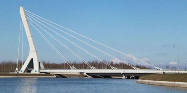 Митинг против моста Кадырова в Петербурге согласовали