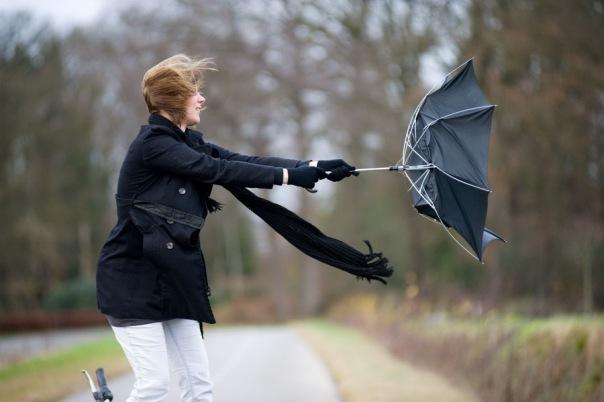 В Петербурге ожидается усиление ветра