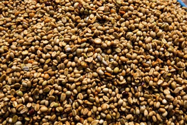 В Петербург не пустили 58 тонн бразильского кофе