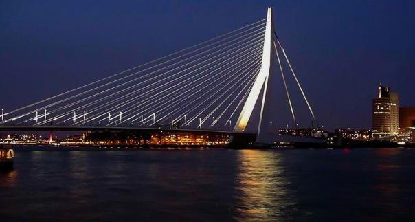 СМИ: Четыре краеведа ушли из комиссии Петербурга из-за моста Кадырова