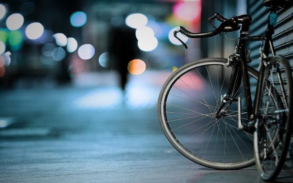 В Адмиралтейском районе книги из библиотеки бесплатно доставят на дом велокурьеры