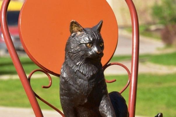 Памятник кошке появился на улице Композиторов