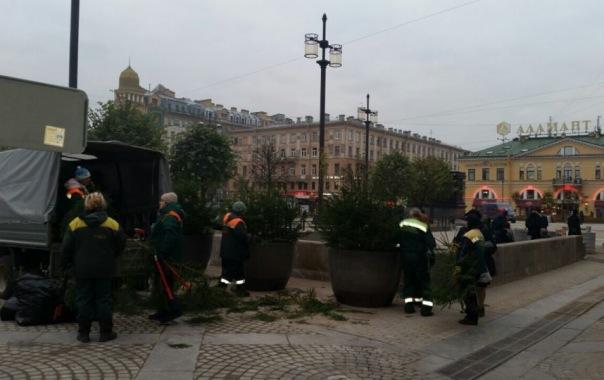 В Смольном ответили на обвинения в фиктивном озеленении Сенной площади