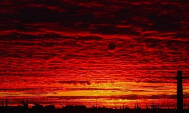 Пользователи Сети обсуждают кроваво-красный закат в Петербурге