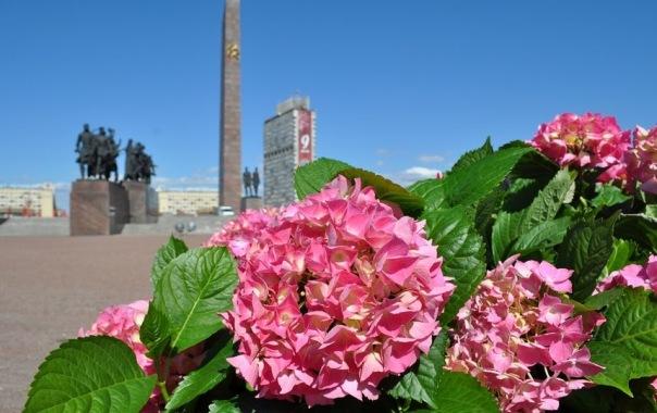 Садовники высадили в Петербурге ко Дню Победы почти 400 тысяч цветов