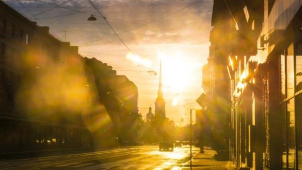 Главный синоптик Петерубрга посоветовал горожанам убирать новогодние украшения