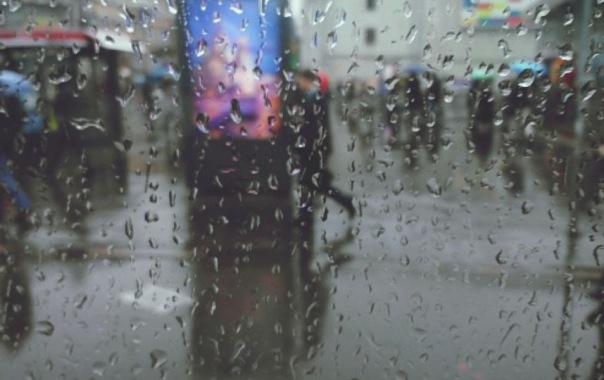 В Петербурге ждут летних холодов